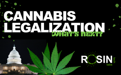 THE TIPPING POINT: COULD CANNABIS BECOME FEDERALLY LEGAL IN 2021?